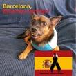 バルセロナのテロに関…