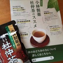 小林製薬 濃い杜仲茶
