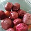 プラムを使った梅干しの作り方【レシピあり】の画像
