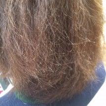 ビビった髪を直せる施…