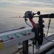 大爆釣!スルメイカの…