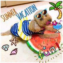 夏休みももうすぐ終わ…