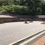 そして、京都に滞在