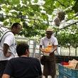 「安心院農園で葡萄狩…