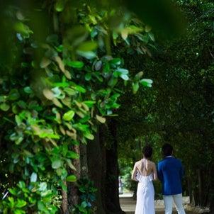 柿沼ウェディングまでの1年スタート‼︎の画像