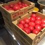 トマトとある日の前菜