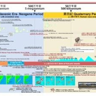日本人はネアンデルタール系種族の生き残り?の記事に添付されている画像