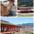 厳島神社と弥山