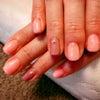 今日もピンクが人気でしたの画像
