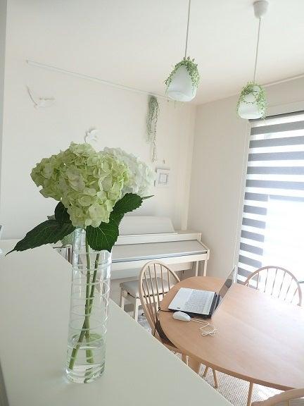 【グリーン】アジサイの花を飾りました & 無印良品でお買い物♪