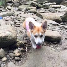 養老渓谷~粟又の滝へ…