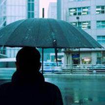 雨の日の調査は…