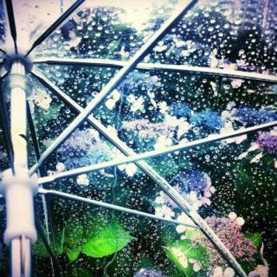 (間取りシリーズ)営業さんアドバイス①玄関タイルと傘立ての記事に添付されている画像