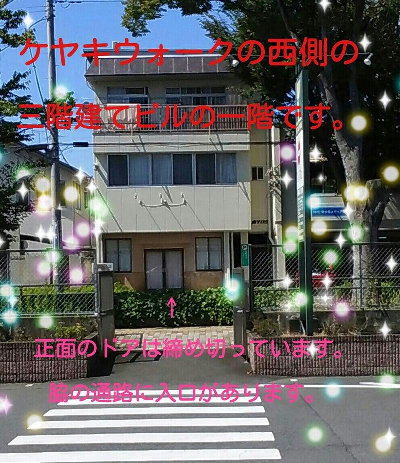 キラキラ_20170909_114429.jpg