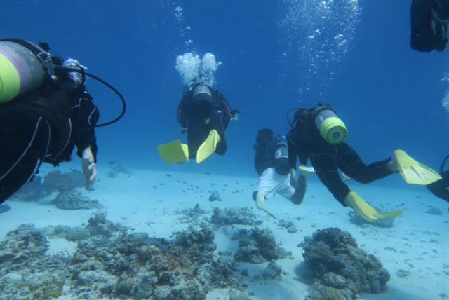 沖縄ダイビング12