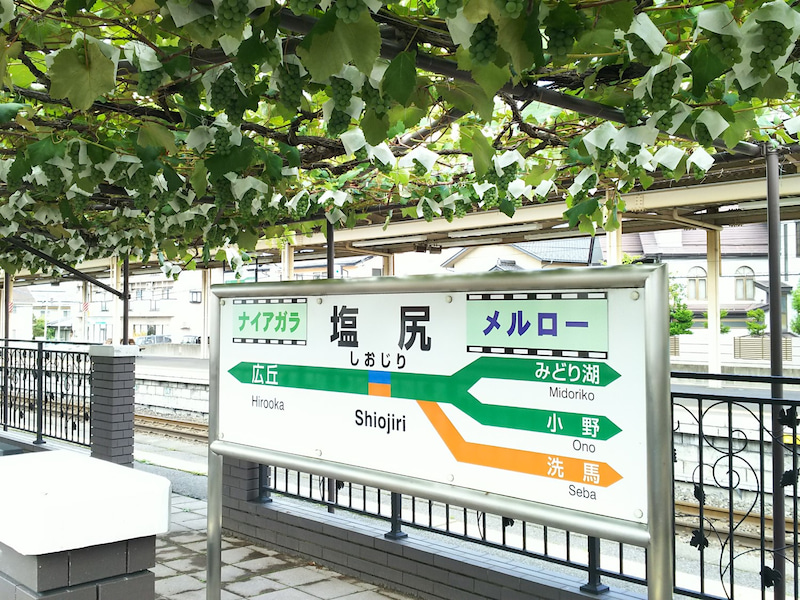 JR塩尻駅 ホームのブドウ園 | Lo...