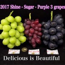 2017 Shine…