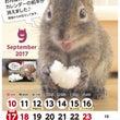 9月の俵太カレンダー