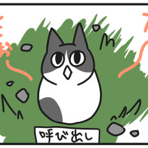 【ねこナビさん掲載の…