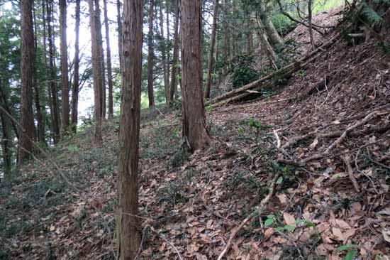 【写4】吉田城山