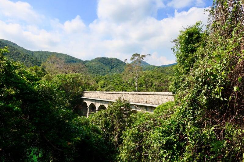 香港大自然8