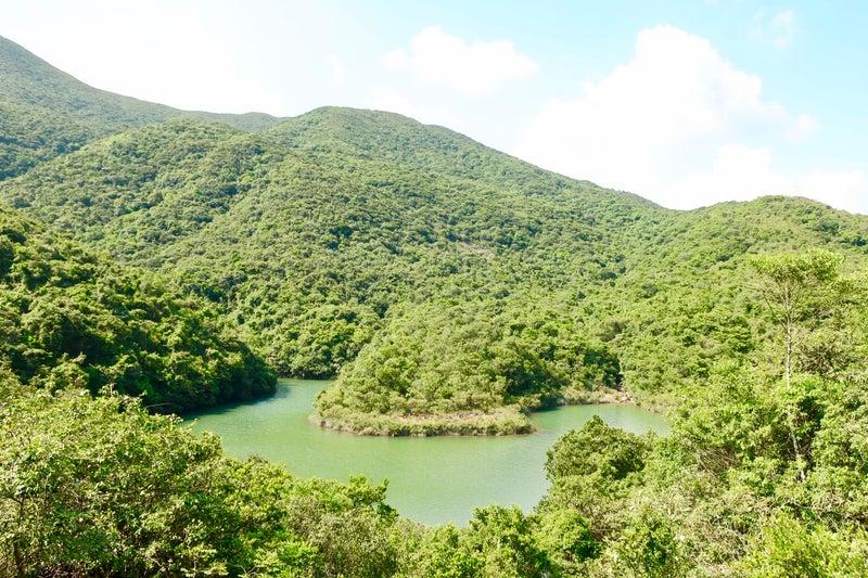 香港大自然4