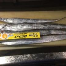 太刀魚…台風