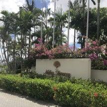 RICA WAX沖縄…