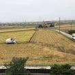稲刈り収穫真っ只中!…