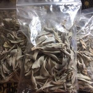 カリフォルニア産ホワイトセージの葉 クラスター状を販売の画像