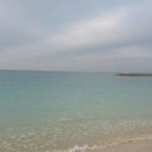 ちびーず沖縄へ行く。…