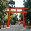 9月の京都 下鴨神社…