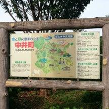 ☆★中井町 厳島湿生…