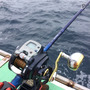 寒猫根で高級魚アカム…