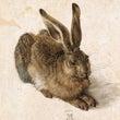 デューラーの動物画
