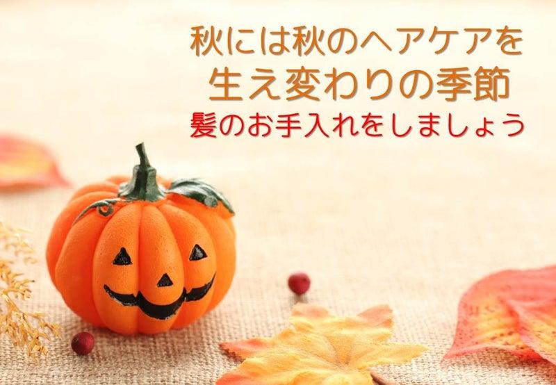 秋のヘアケア