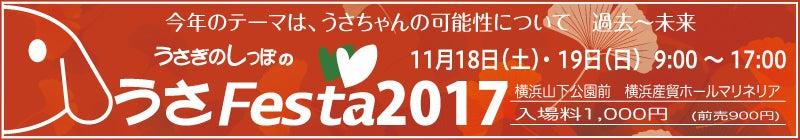 うさフェス2017秋☆ブースNo.29!