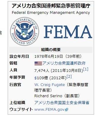 柿狩りと FEMA   NY と FL 驚き...