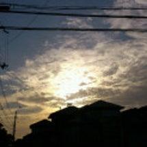 爽やか  今朝の風景
