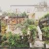 Wedding Party!@表参道bambooの画像