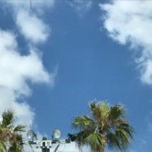 沖縄求人に今年も行っ…