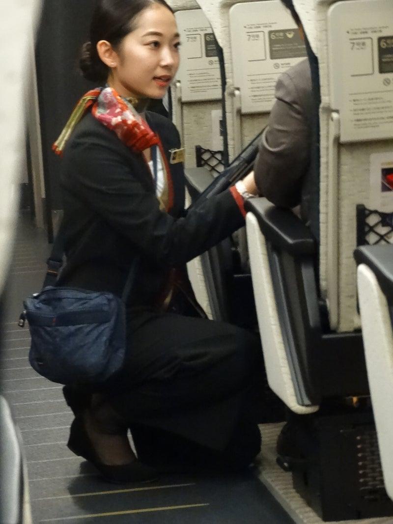 京阪特急 プレミアムカー | 大阪の道楽者のブログ
