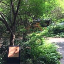 天然田園温泉ふかほり…