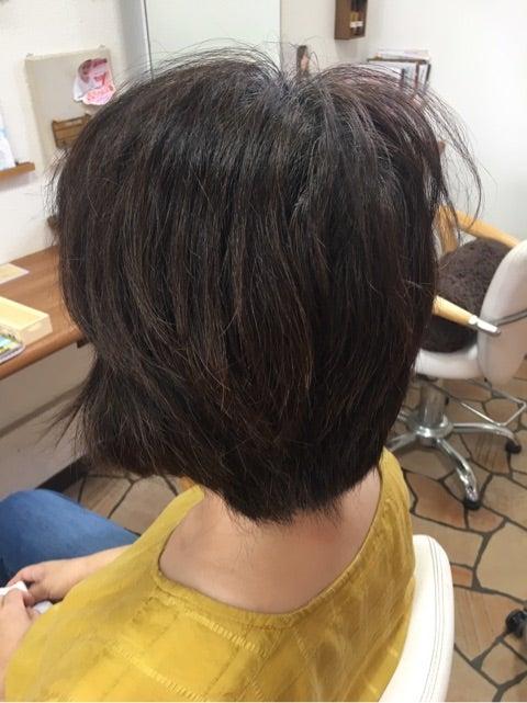 カットの時に毛流を整える、整えない時の差