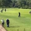 鯖江市長杯マレットゴルフ大会の画像