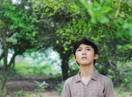 純朴「草原に黄色い花を見つける」   やっぱり映画一番星