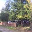 奥長良キャンプ場で秋…
