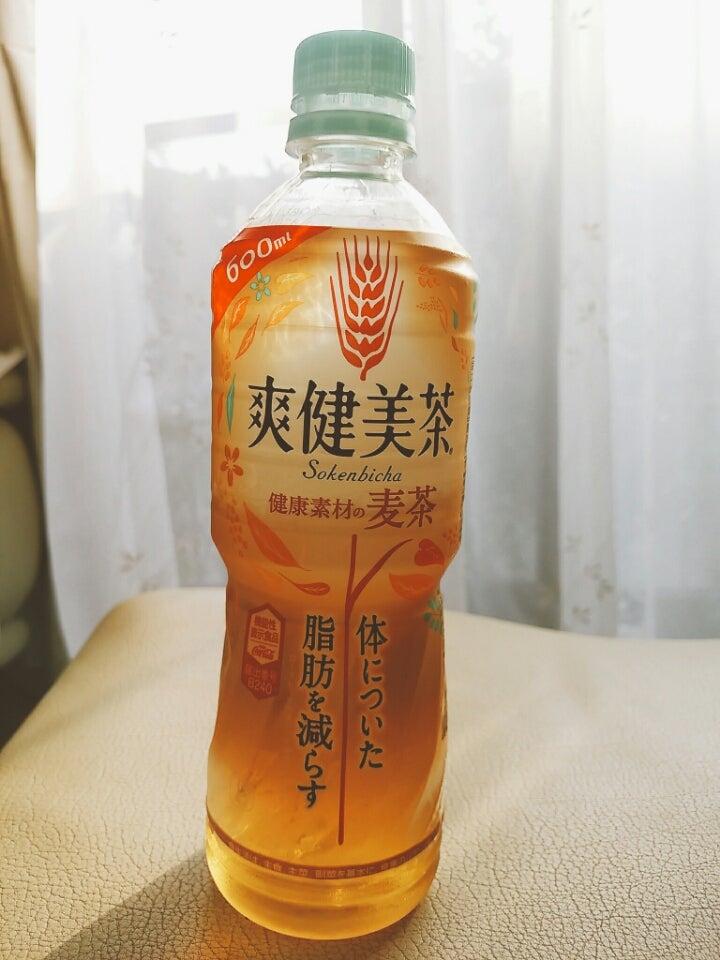 効果 茶 爽 健美 「初めての洗車 ~SGコートの効果~」爽健美茶01のブログ
