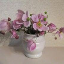 花瓶 秋明菊