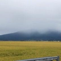 山形県酒田市、遊佐